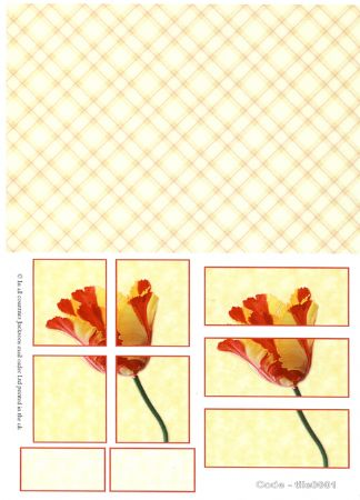 Tulip Tile Greeting Card Craft Sheet